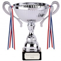 Turin Silver Cup