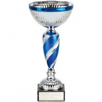 Inspire Cup
