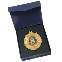Gold Netball Medal in box