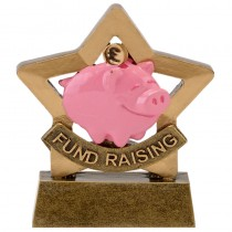 Mini Star Fund Raising