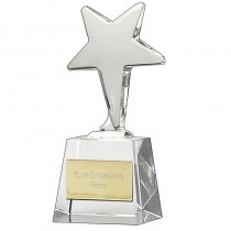 IceStar Crystal Award
