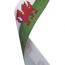 Flag Neck Ribbon Wales