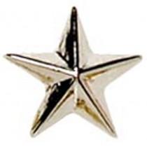 Silver Raised Star Badge